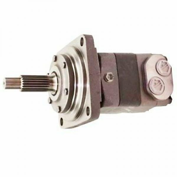 Bomag 05815230 Reman Hydraulic Final Drive Motor #1 image
