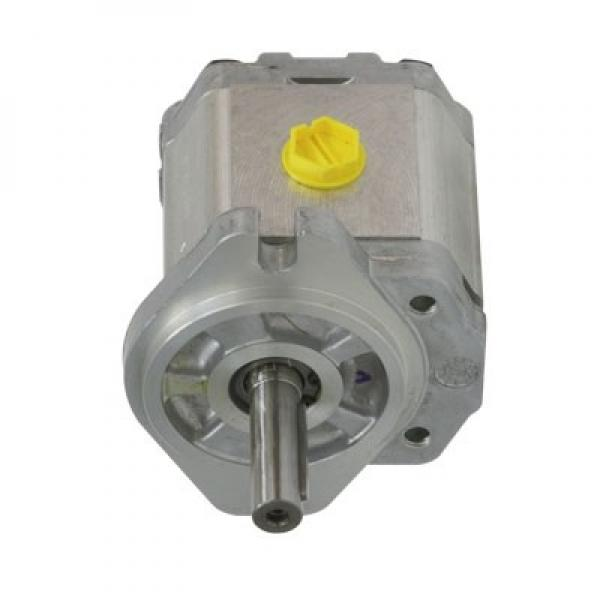 Caterpillar 106-8944 Hydraulic Final Drive Motor #1 image