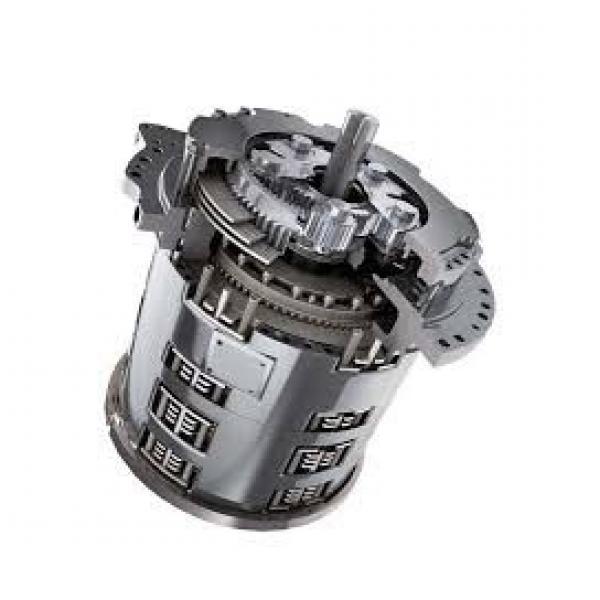 Caterpillar 163-9757 Hydraulic Final Drive Motor #1 image